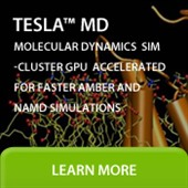 Tesla MD SimCluster
