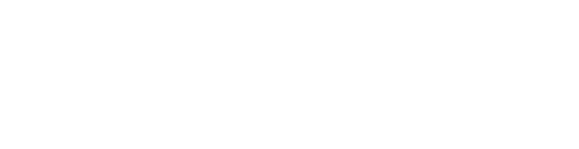 Iguazio White Logo