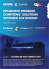 Integrated Immersed Computing® Solutions Optimised for Synergy