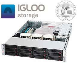 Boston Igloo 2U-30T-Stor-10GSFP