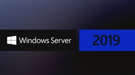 Installation DVD for Windows Server 2019 Essential English