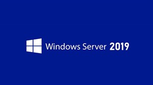 Windows Server 2019 Remote Desktop Services CAL Client Access License (5 User)