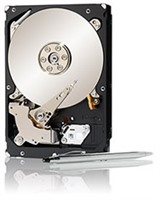 Seagate Constellation ES 1TB SAS2