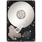 Seagate Barracuda 7200.10 750GB SATA