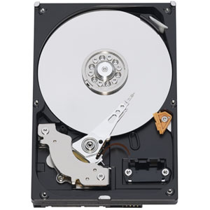 Western Digital RE3 250GB SATA
