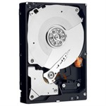 Western Digital RE4 250GB SATA