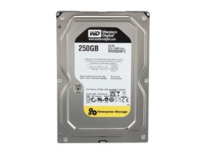 (EOL) Western Digital RE4 250G SATA3 6.0G 7200RPM 64M